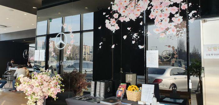 메르세데스-벤츠 전시장에 봄이 찾아오다